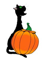 Halloween Costumes: Sorted.